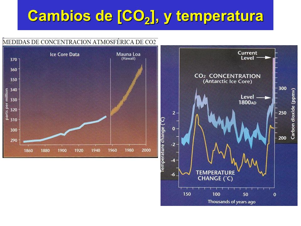 Cambios de [CO2], y temperatura